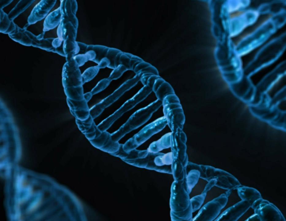 genoma salud digital